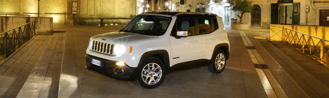 Jeep Renegade Van